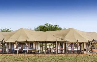 Afrika Tansania Serengeti Central One Nature Nyaruswiga Serengeti Family Tent Pa