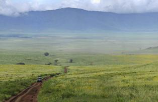 Afrika Tansania Ngorongoro The Highlands The-Highlands-Ngorongoro-in-bloom_1920