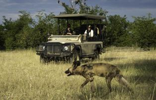 Botswana Linyanti Kings-Pool-Camp Kings_Pool_2015-03-83