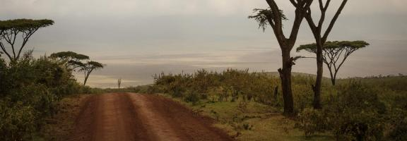 Afrika Tansania Ngorongoro The Highlands