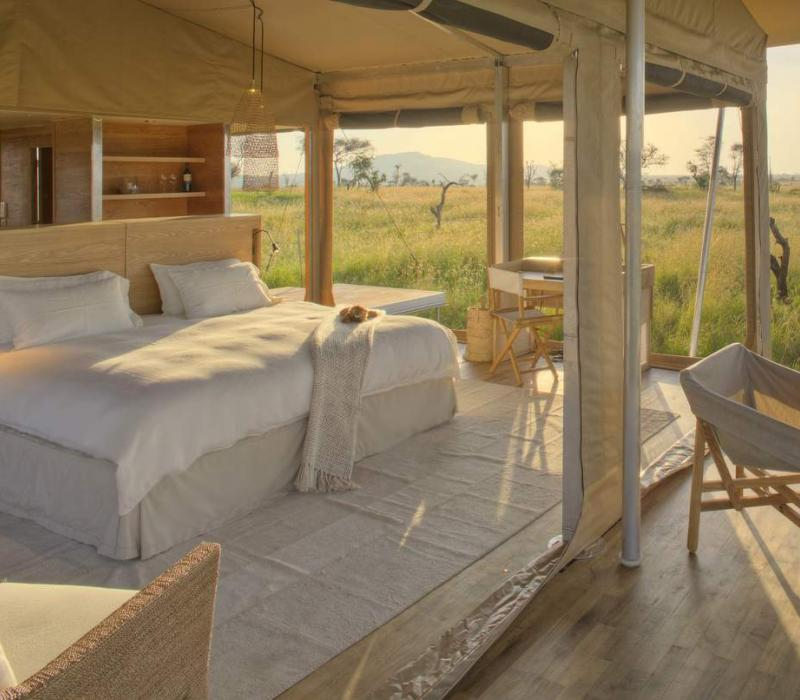 Afrika Tansania Serengeti Central Roving Bushtops Camp Roving Bushtops tent and
